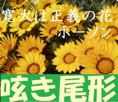 花紀行 記事一覧 2014年12月21日